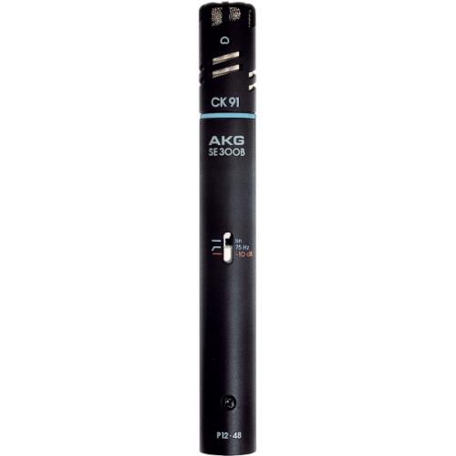 AKG C 391 B