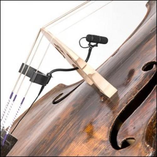 DPA d:vote 4099 Bass