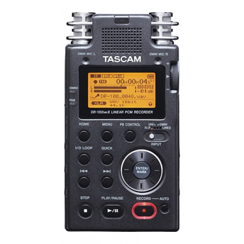 TASCAM DR-100MKII